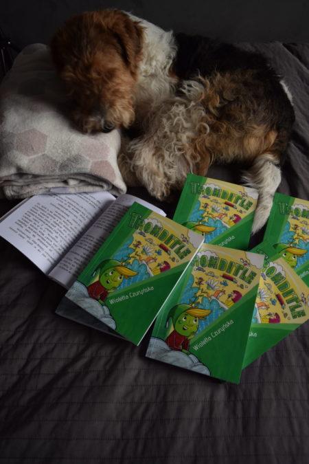 Tronditle - Floki czyta